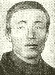 Синельников Михаил Ильич