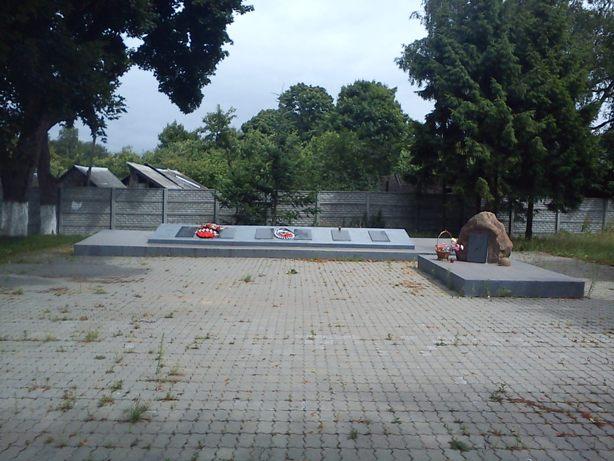 Братская могила (общий вид)